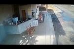 Morte Copemcan: polícia divulga vídeo com imagens da ação